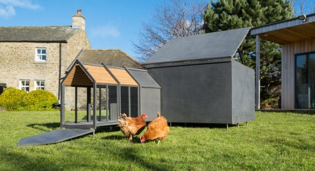 Minimalist Chicken Coop by RASKL