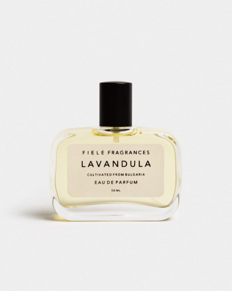 lavandula-orris-perfumery