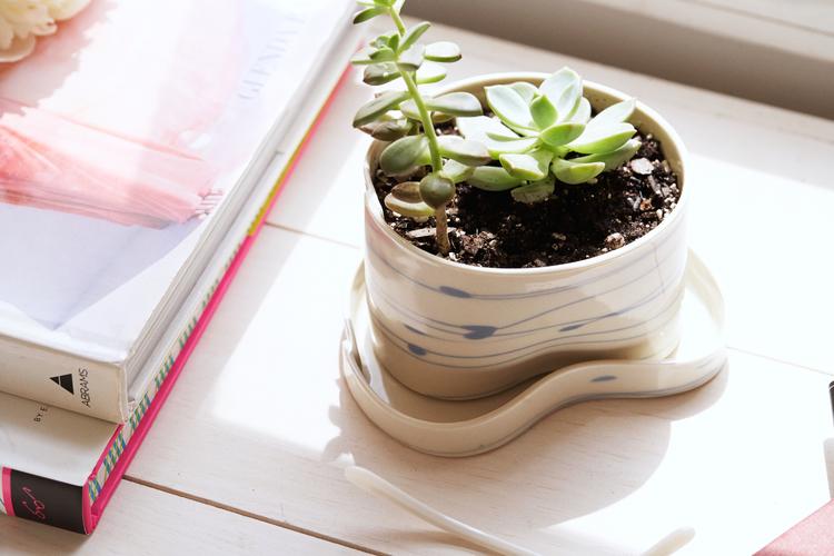stripeblueplanter_wilcoxsonplanter-product-11