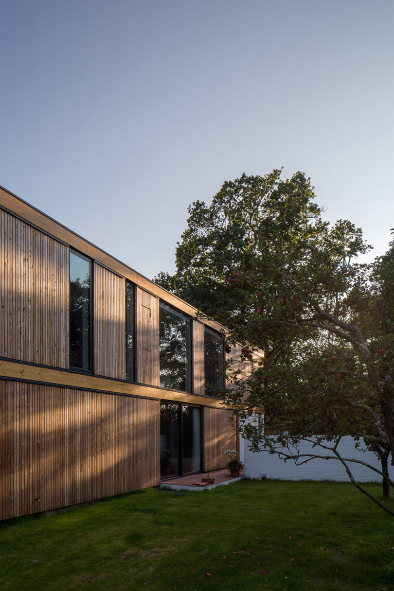 stromarchitects_woodpeckers-house-11