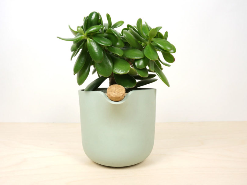 studio-lorier-self-watering-flowerpot-natural-balance-3
