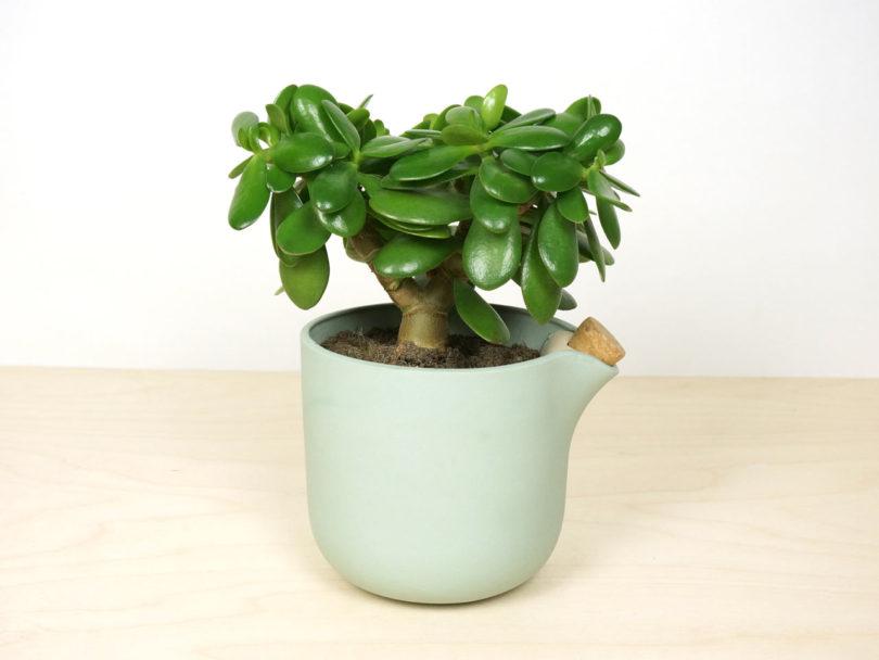 studio-lorier-self-watering-flowerpot-natural-balance-5