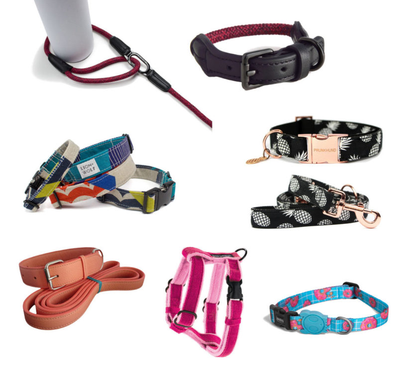 dog_collar_leash_harness_gift_guide