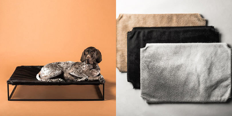 modern_pets_gift_guide_003