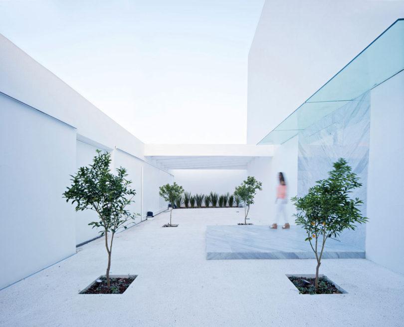 domus-aurea-house-mexico-3