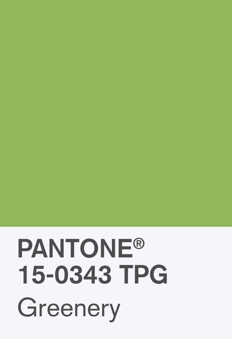pantone_coy_2017_heroshot-rgb-chip-2