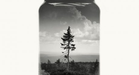 Christoffer Relander's Jarred & Displaced Finnish Landscapes