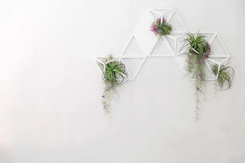Geometric, Modular Air Planters by Moana Design Studio