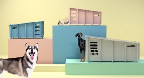 Designer Dog Houses from Barkitecture