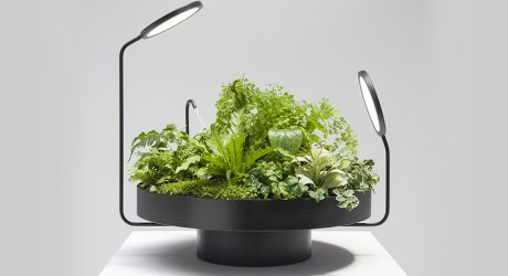 Alien-Like Planter Lights From Goula / Figuera Studio