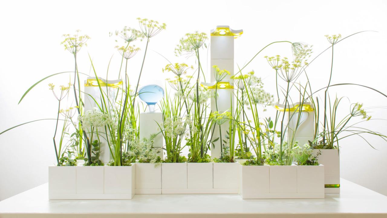 LeGrow Smart Garden Is Like LEGO Blocks for Growing Plants