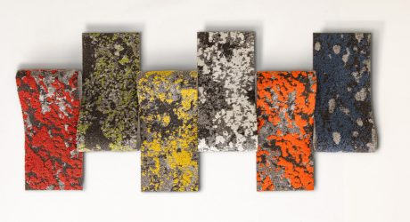 Mohawk Brings Nature Inside with Lichen [Video]
