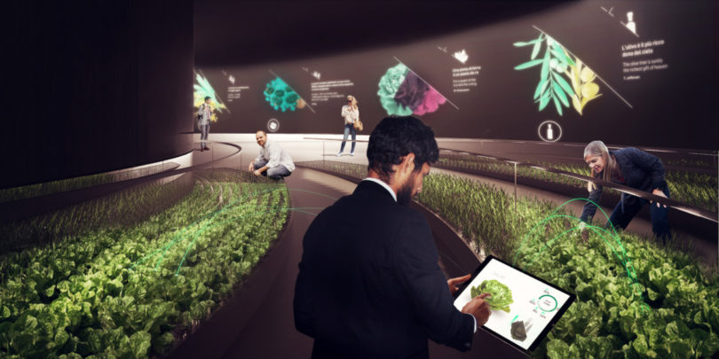 Cultivating Change Through Design, Innovation and Technology at EDIT 2017