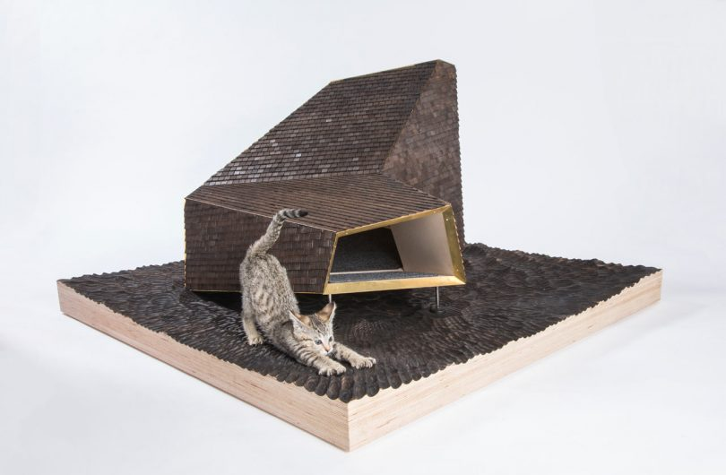 Modern, Architect-Designed Outdoor Cat Dwellings for Charity