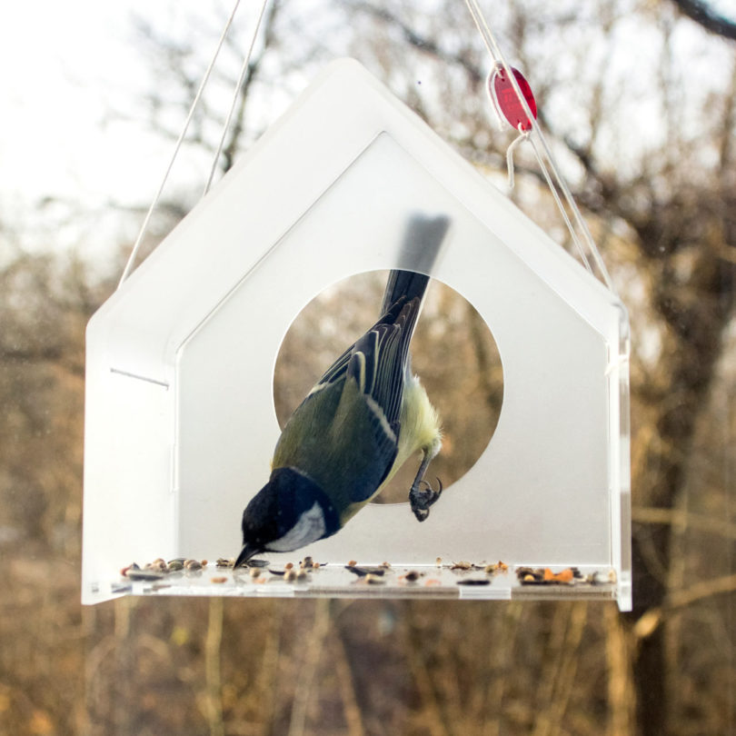 listing il feeders bird feeder acrylic clear zoom fullxfull hanging