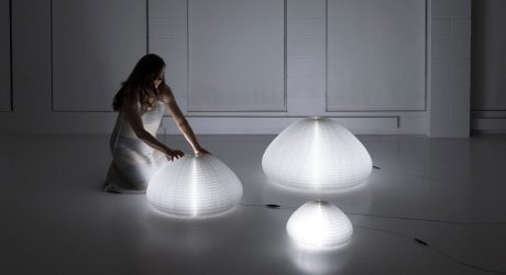 molo's Transformable urchin softlight