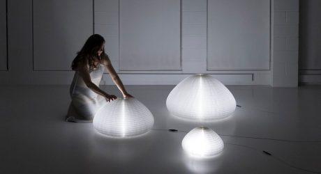 molo's Transformable urchin softlight