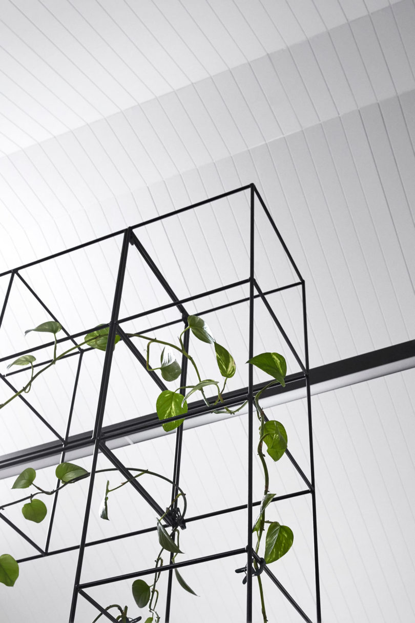 Sealed Grow Room Design: Candlefox HQ: A Graphic, Black And White Office In