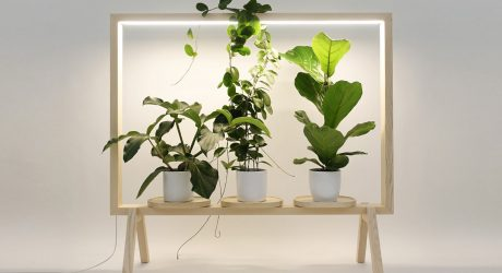 GreenFrame Adds a Window of Greenery Anywhere