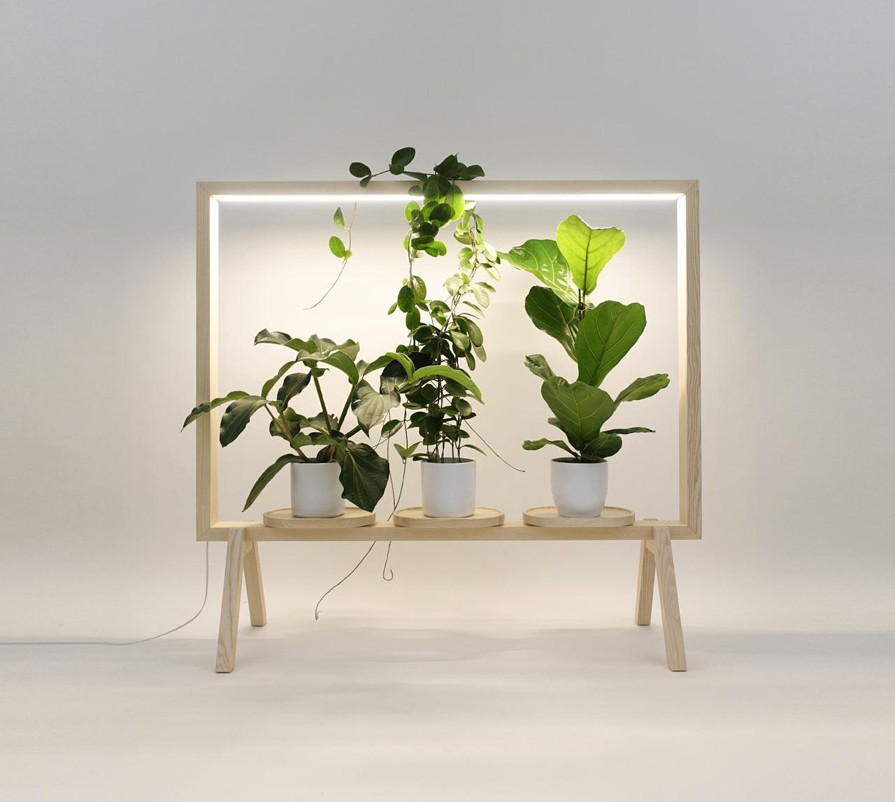 GreenFrame Adds a Window of Greenery Anywhere