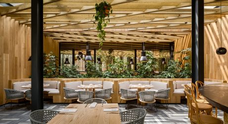 Piedra Sal: A Modern Restaurant in Mexico City