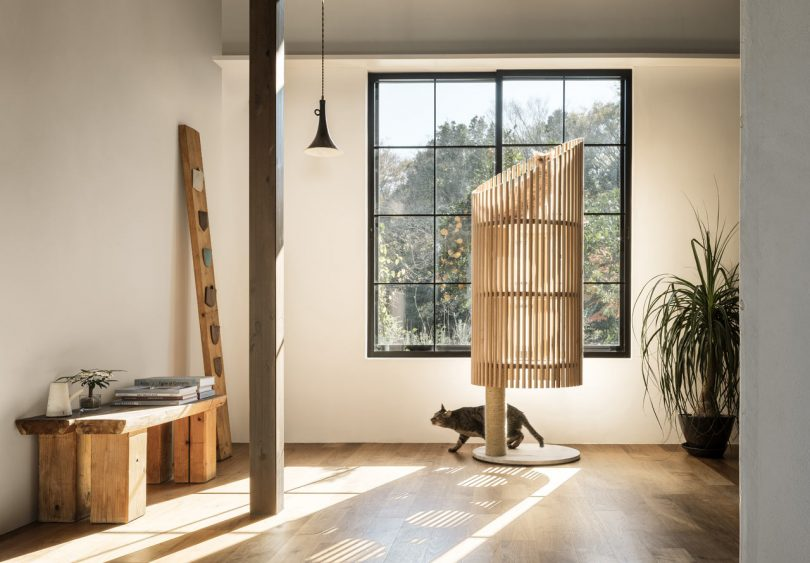 NEKO: A See-Through Modern Cat Tree by RINN