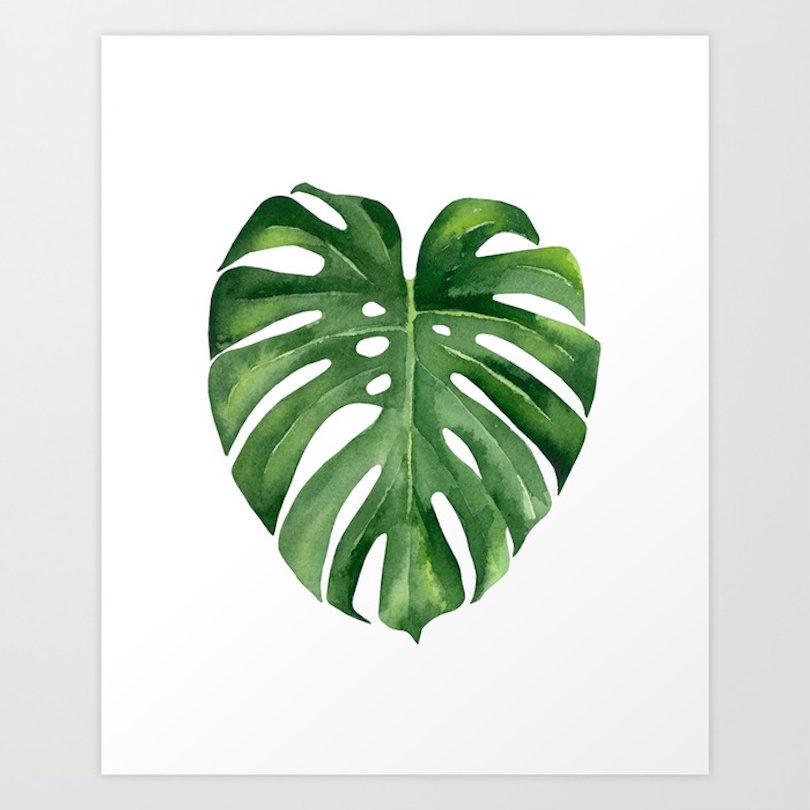 Watercolor Green Plants Monstera Nature Posters And Prints: Fresh From The Dairy: Going Green