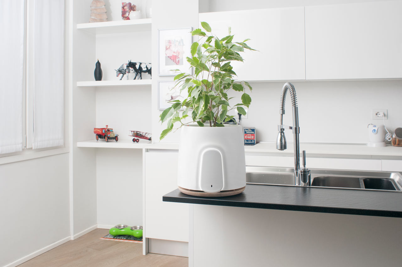 NATEDE: A Smart and Natural Air Purifier by Clairy