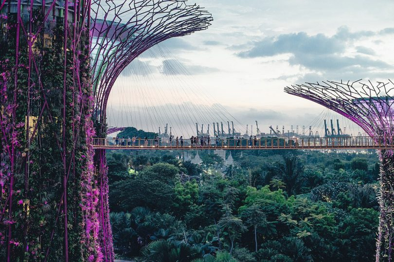The Crazy Rich Asians Guide to Design and Architecture in Singapore