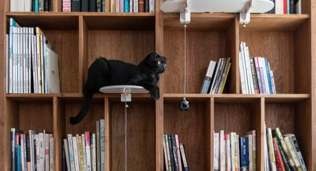 Studio RYTE Makes CATTSUP Adaptive Cat Furniture and Accessories for City Dwellers