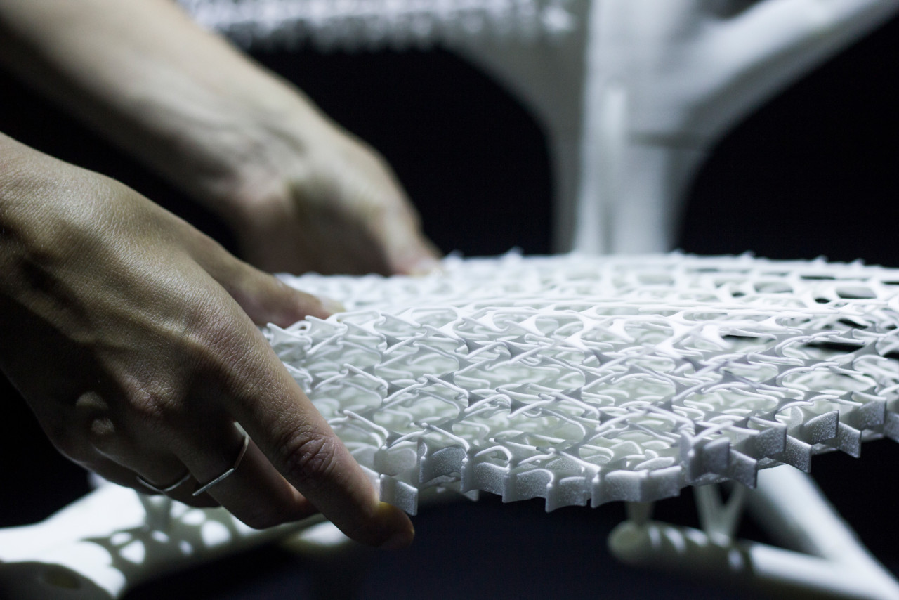 Radiolaria #1 Chair Mimics the Intricacies of Microscopic Organisms