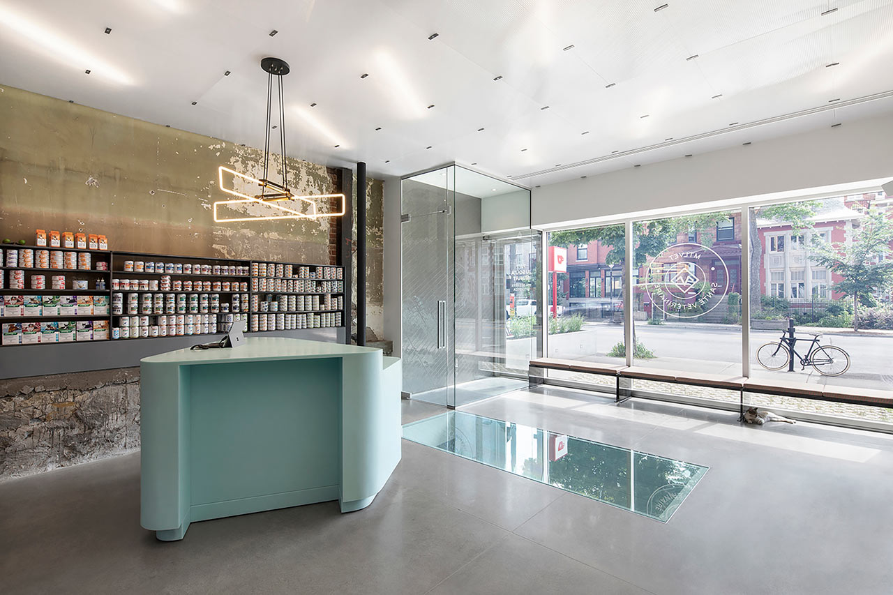 A Renovated, State-of-the-Art Vet Clinic in Montréal