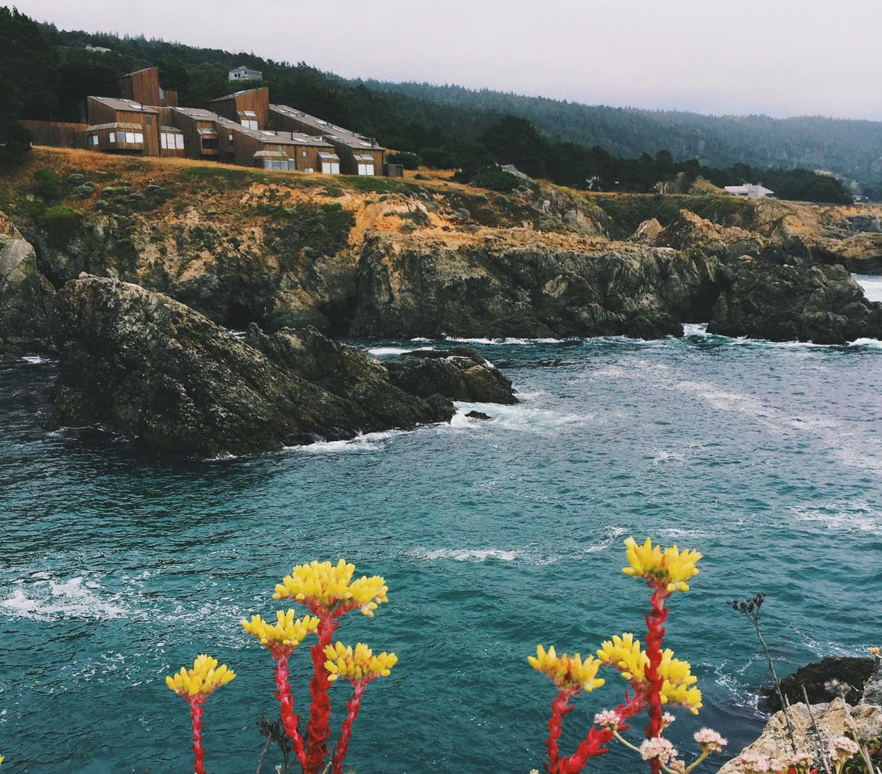 Design Milk Travels to… The Sea Ranch