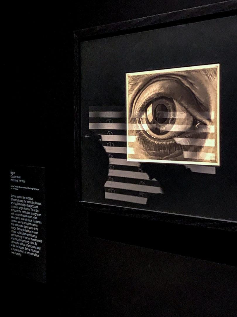 埃舍利克斯内多:澳大利亚文化中心的超然展览