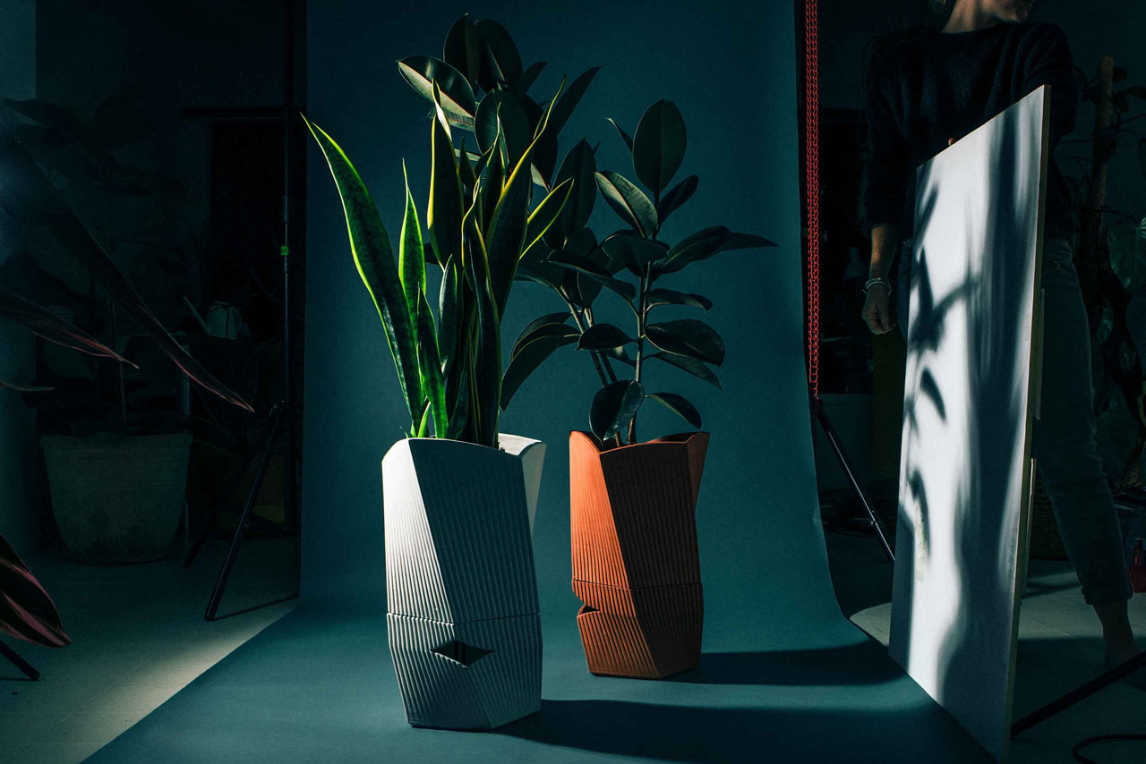 Carmen Aims to Keep Your Plants Alive for up to 3 Weeks