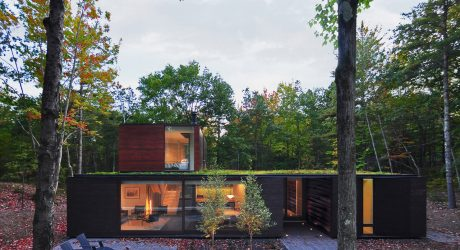 Pleated House Resides in a Forest on the Shores of Lake Michigan