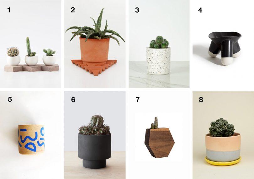 8 Succulent Planters to Get Your Indoor Garden Started