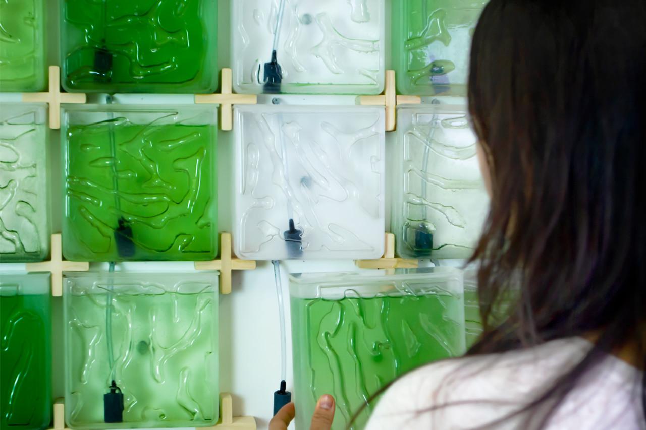The Coral Indoor Micro-Algae Farm