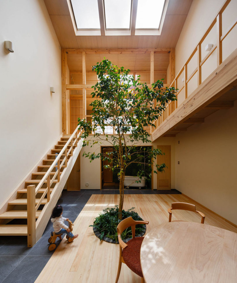 A Family House in Kyoto with a Tree Growing in the Middle