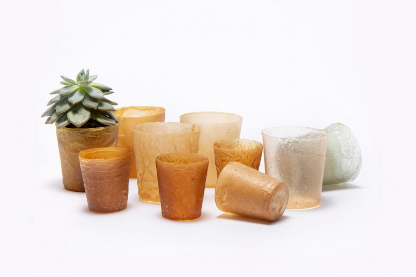 Colorful Compostable Bioplastics