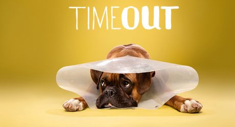 <i>Timeout</i> Cone of Shame Photo Series by Ty Foster