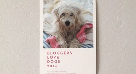 Bloggers Love Dogs 2014 Fundraising Calendar
