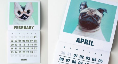 15 Awesome Dog Calendars for 2015