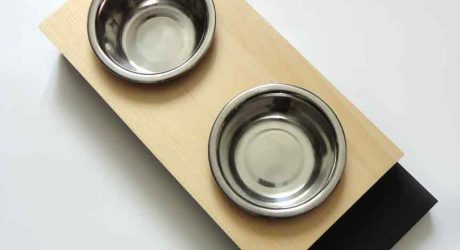 Modern Feeders and Beds for Small Dogs (and Cats) from Animalove