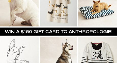 The Dog Shop at Anthropologie, Plus a Giveaway!