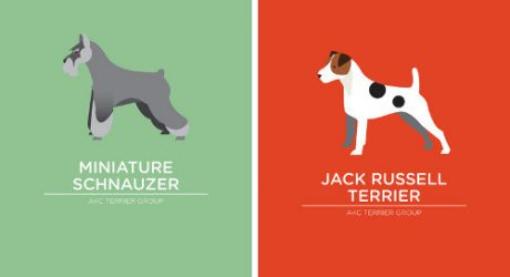 Minimalist Dog Breed Prints by Bethany Ng