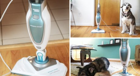 Mingus & Dottie Try It: Black & Decker Steam Mop