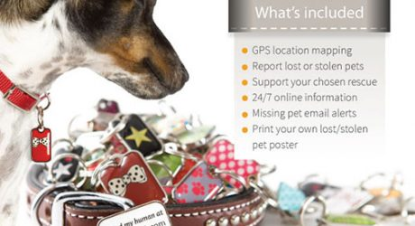 Trackable Pet ID Tags by blanket ID