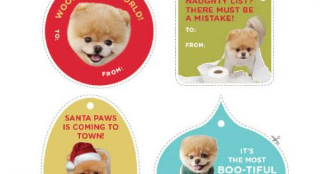 "Free Printable ""Boo: The World's Cutest Dog"" Gift Tags"