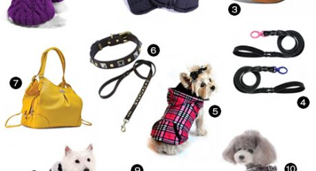 Boutique Dog Products from House of Paw et Bebe